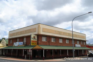 Ant Hill Hotel (The)